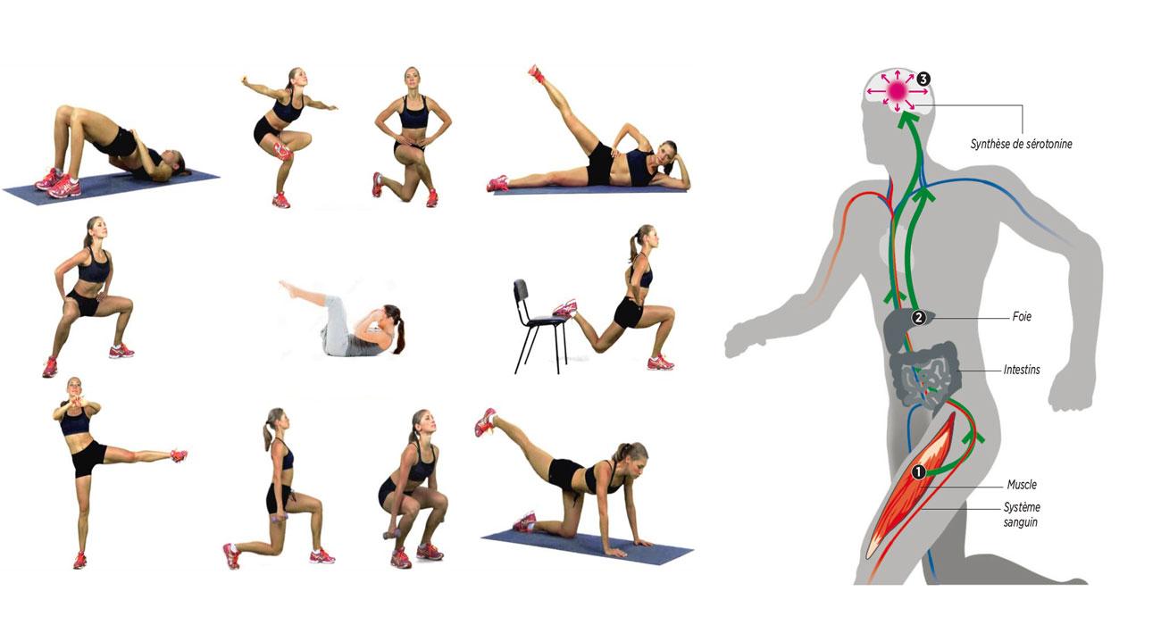 L'impact du manque d'exercice
