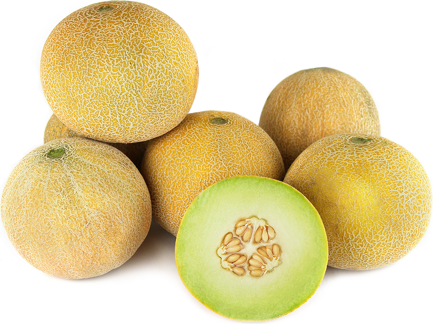 Le melon Galia