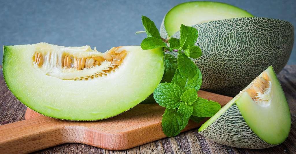 Le melon Vert olive