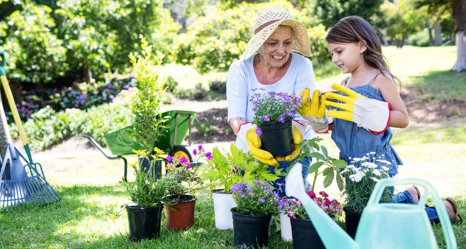 e jardinage est un meilleur stimulant pour la mémoire