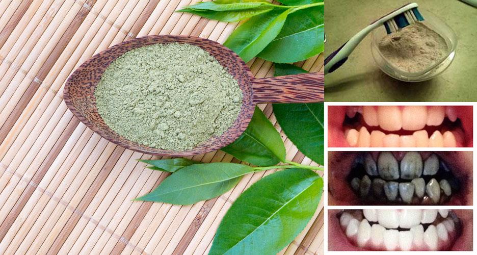 Argile verte pour des dents 100 % blanche